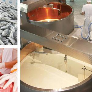 Detergenti, industria alimentare